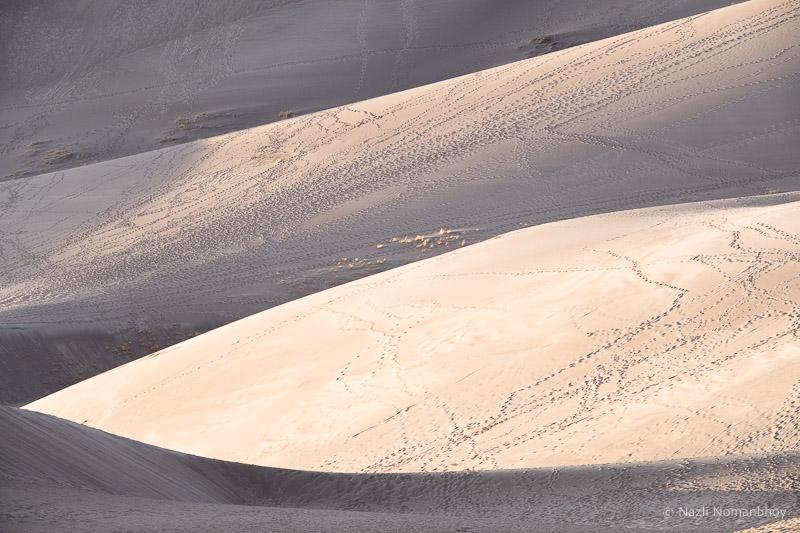171123-SandDunes-107.jpg