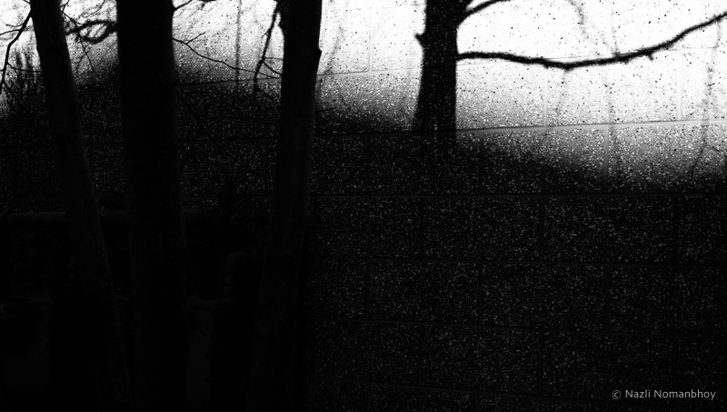 180225-lightshadow-086.jpg