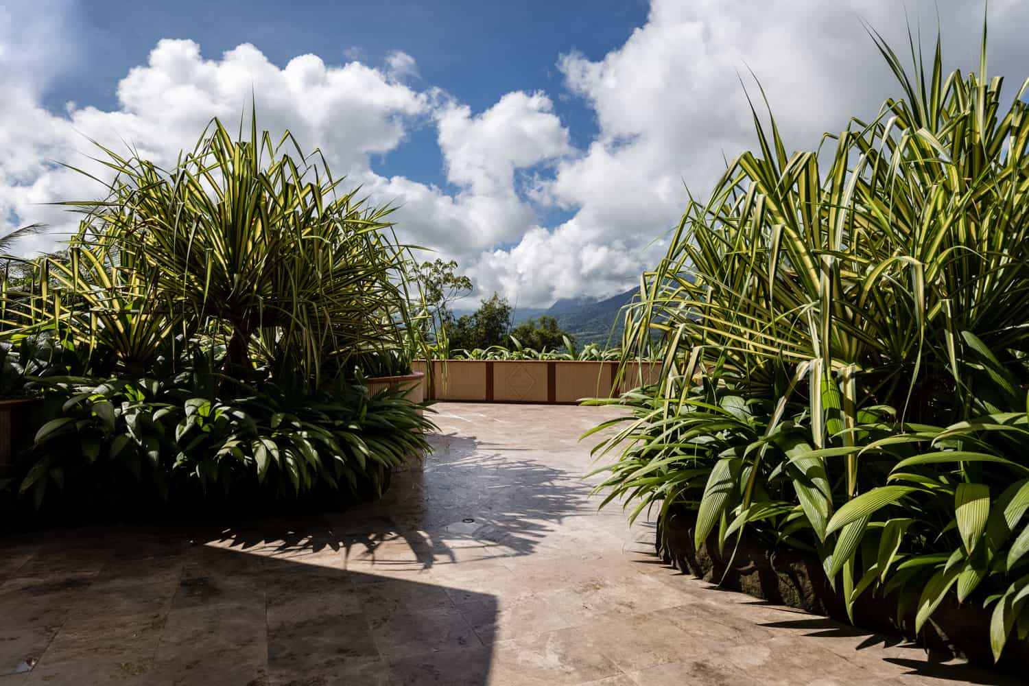 The Sunset Terrace as a wedding location at The Springs Resort & Spa in Arenal.