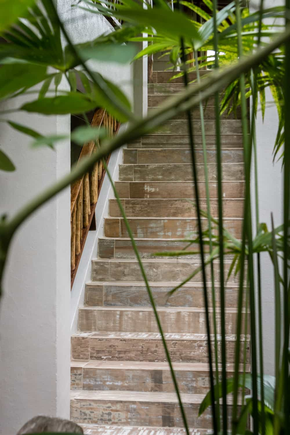 Stairs for standard accommodations at Lost Iguana Resort, La Fortuna.
