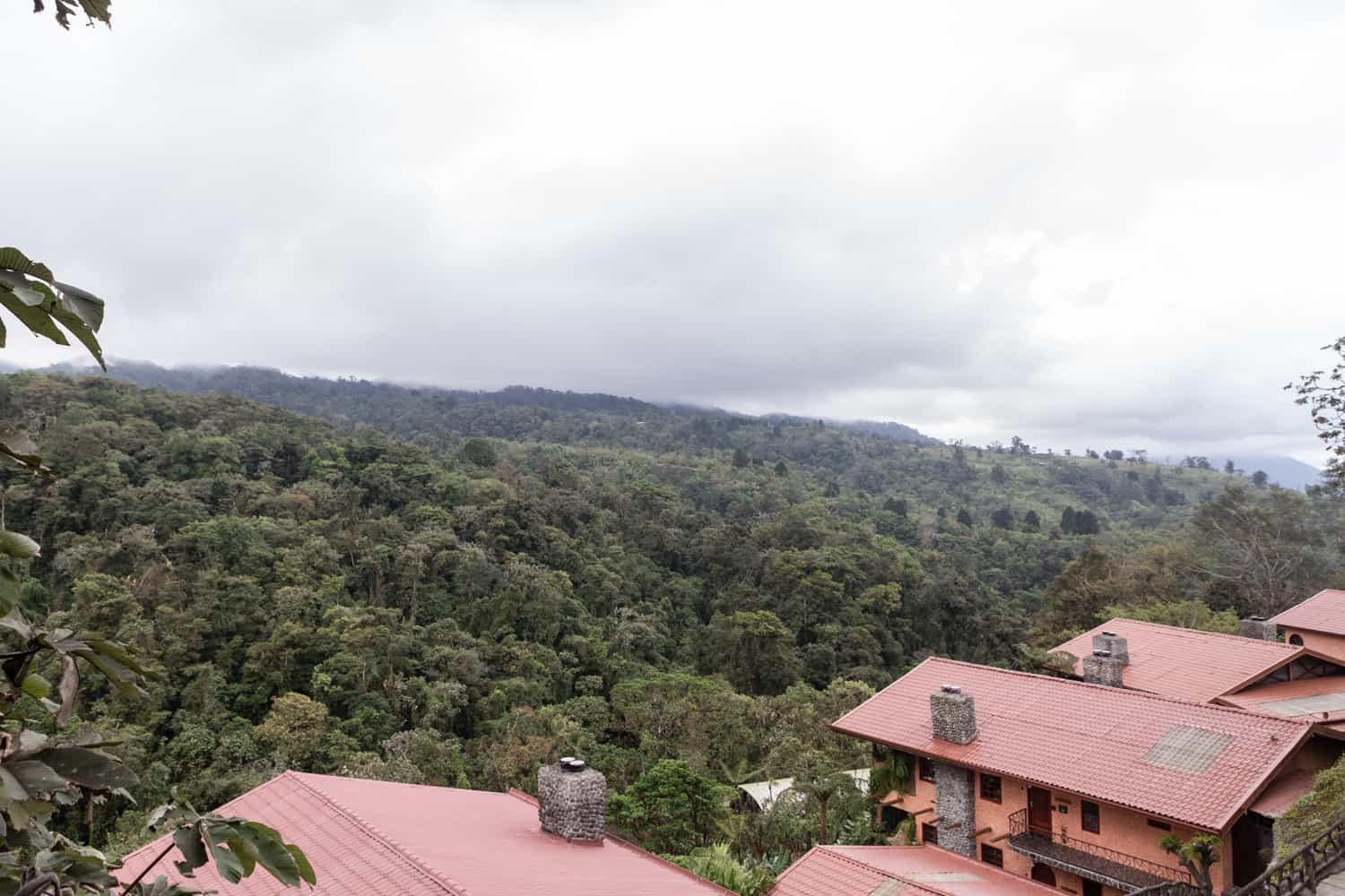 Peace Lodge rooms for wedding guests on hillside surrounded by cloud forest.