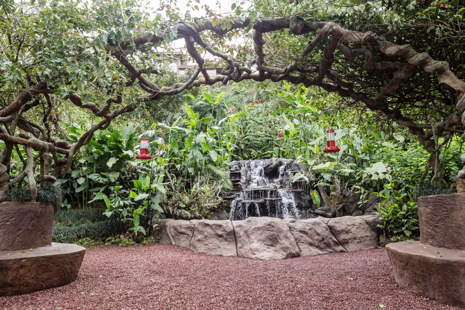 Location for elopement or ceremony under vive-covered arch in hummingbird garden.