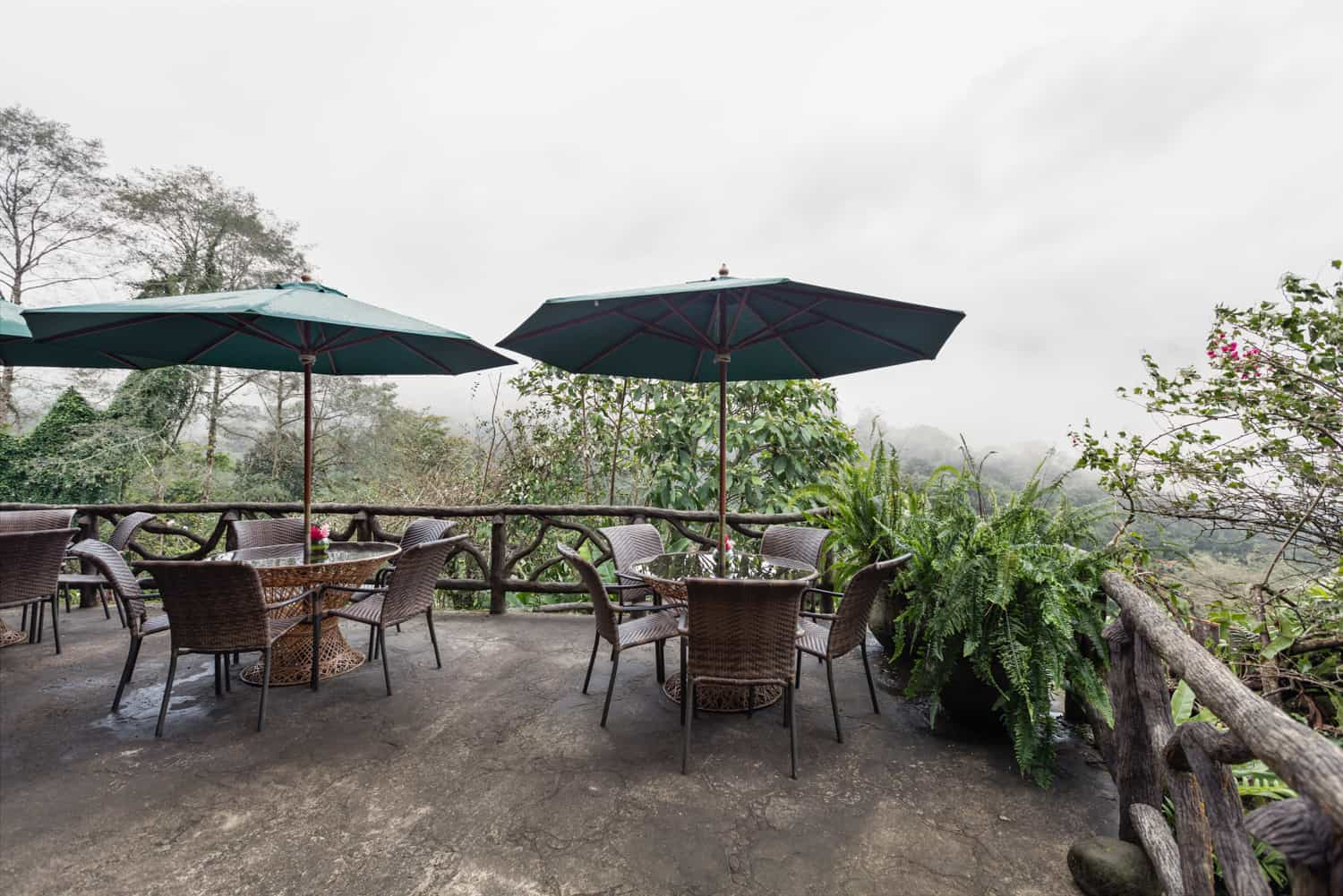 View of cloud forest covered in mist from restaurant terrace at Peace Lodge.