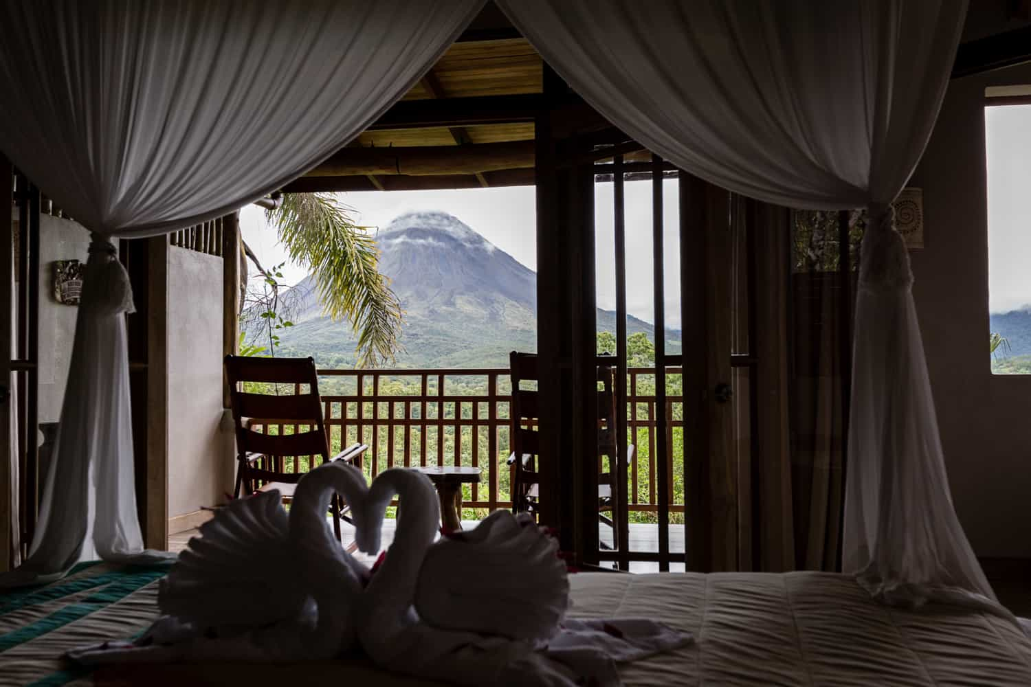Silhouette of towels folded as swans on canopy bed.