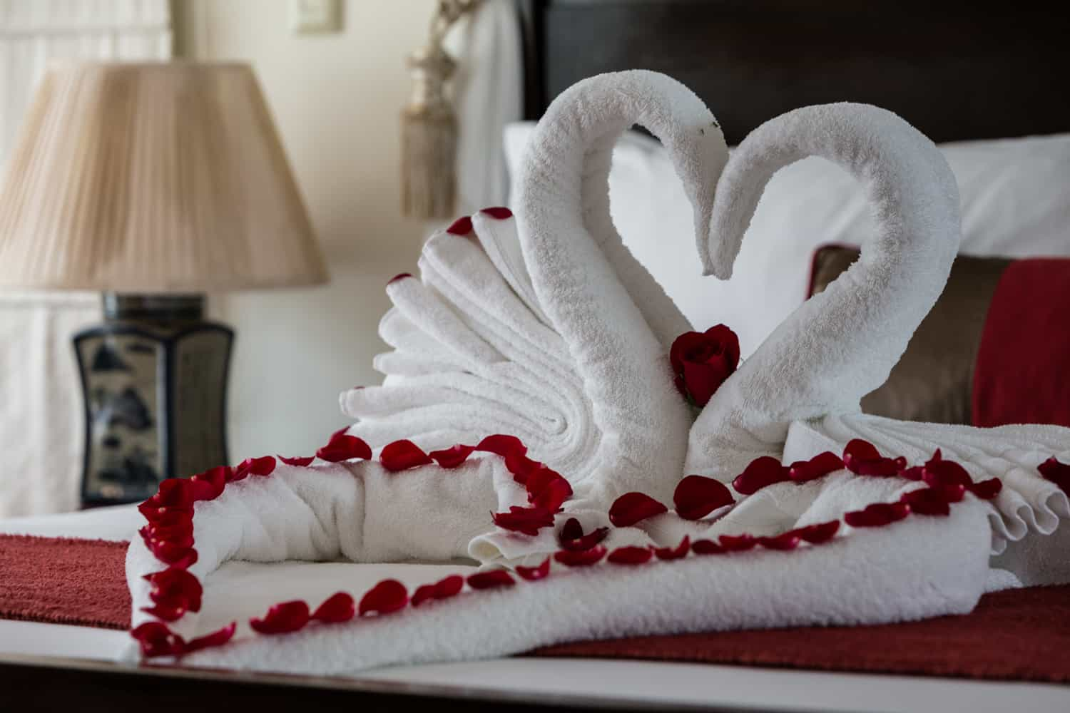 Swan tails in form of heart with rose petals for just married couple.