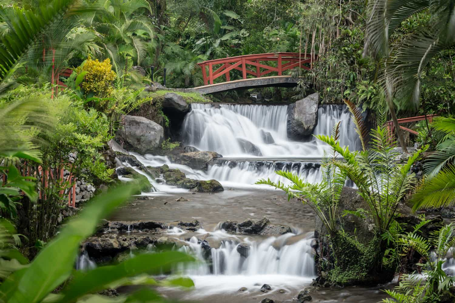 Red wooden bride for elopements over waterfalls at Tabacon Resort.