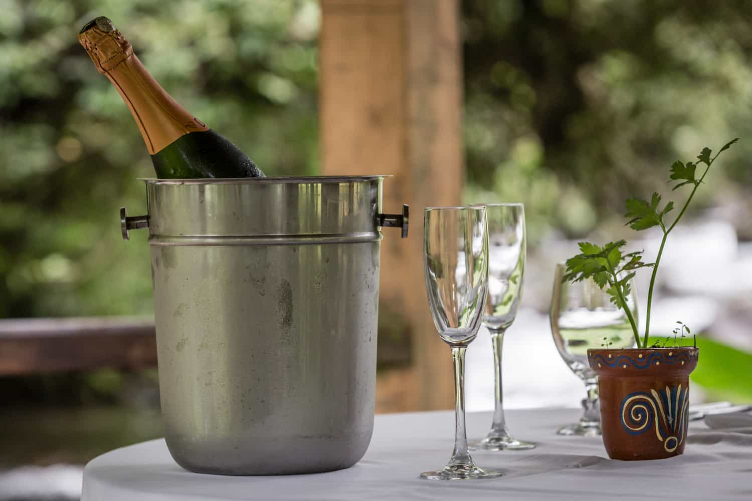 Close-up of chilled champagne for wedding celebration.
