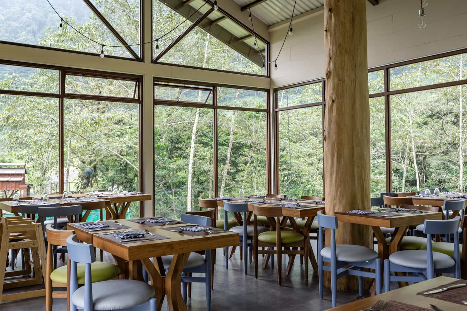 Seating area near glass wall with cloud forest view.