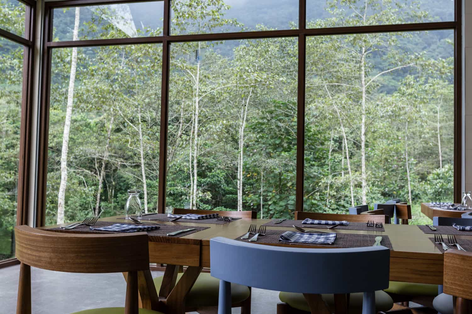 Views of cloud forest from table in restaurant for wedding events.