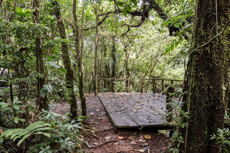 Cloud forest wedding site on riverside deck at El Silencio Lodge.