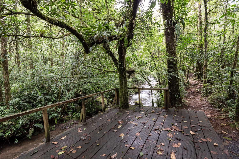 Great site at El Silencio Lodge for a riverside wedding or elopement.
