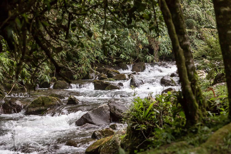 River in cloud forest behind guest Reception Building at El Silencio Lodge & Spa in Bajos del toro.