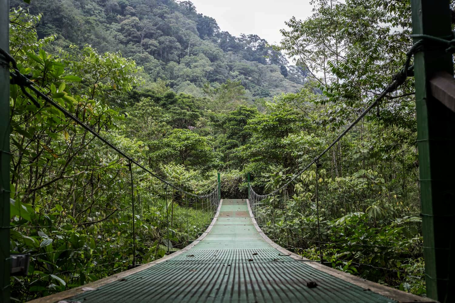 A cloud forest hanging bridge that crosses river at El Silencio Lodge in Bajos del Toro.