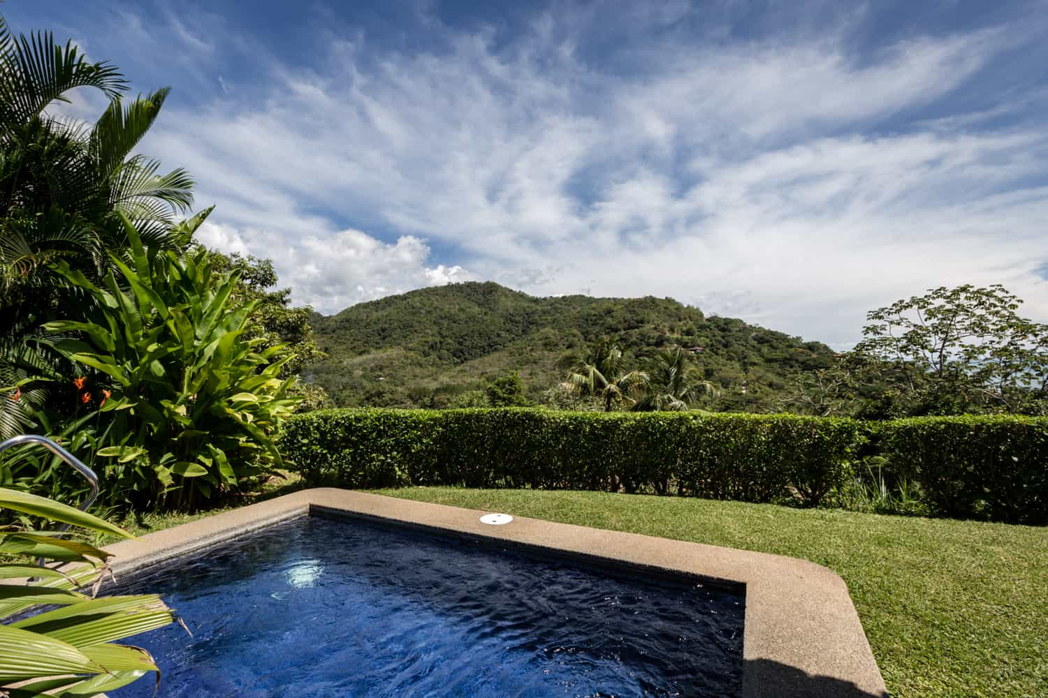 Rainforest-covered mountain in background of private pool.