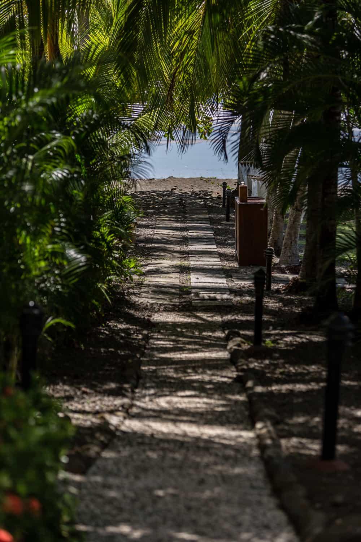 Walkway to beach & garden sites for wedding ceremony & reception.