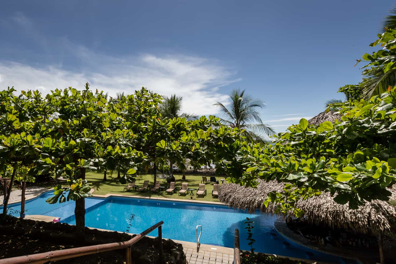 Photo of garden and beach locations for ceremonies and receptions from Los Cocos Restaurant.