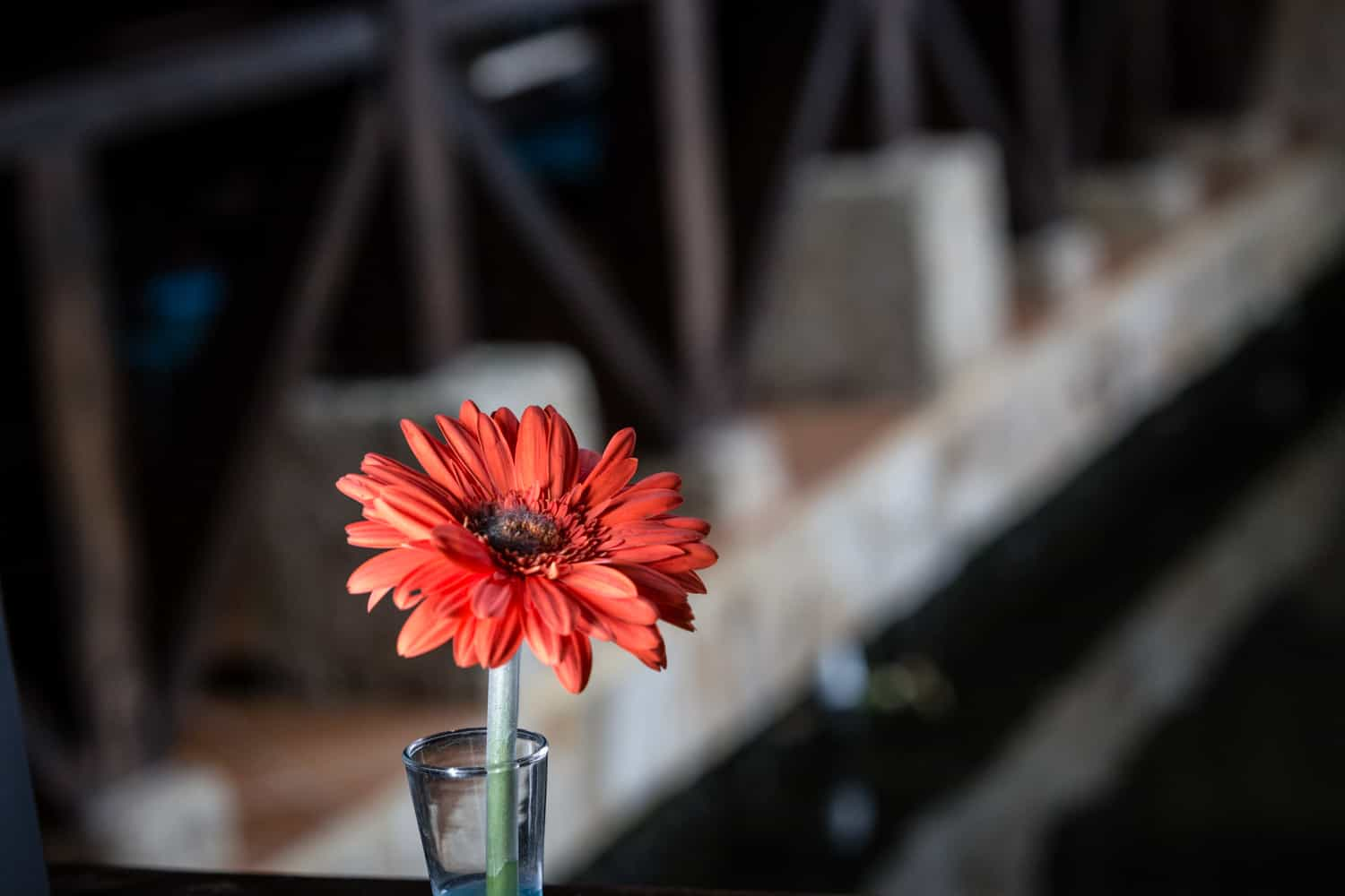 Flower on table in great venue for wedding reception at Rio Celeste Hideaway Hotel.