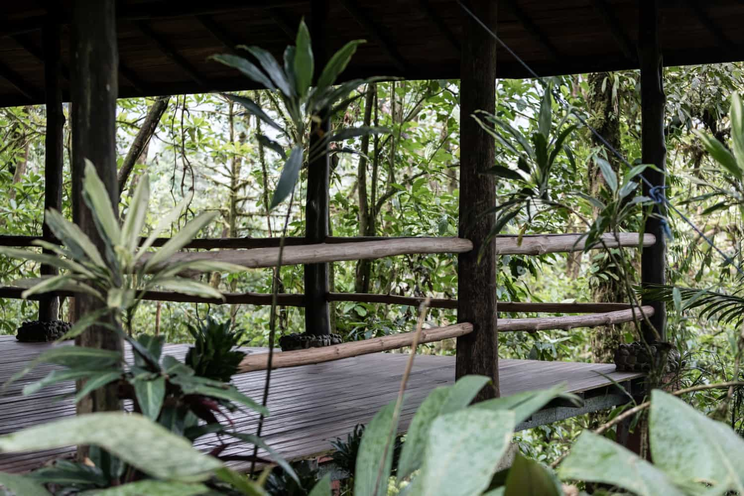 Side view of pavilion in rainforest for wedding ceremonies.