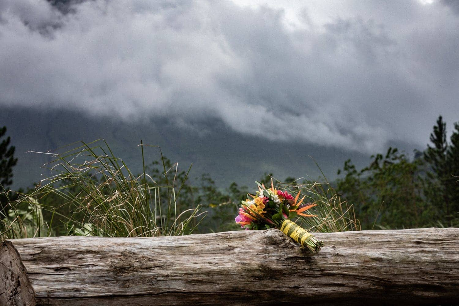 Wedding bouquet on log with Arenal Volcano in background.