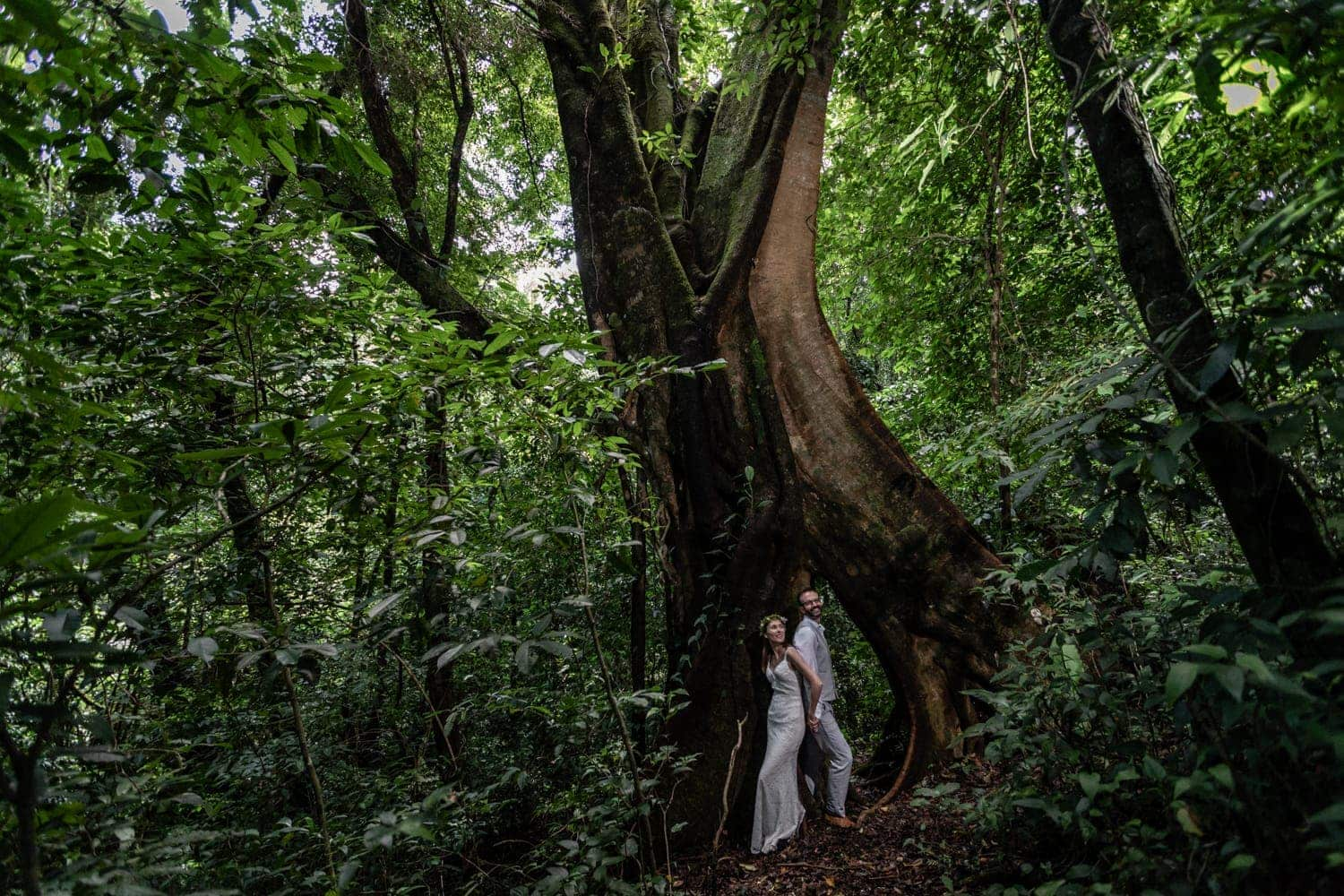 Happy bride and groom pose for photo in front of gigantic tree in rainforest.