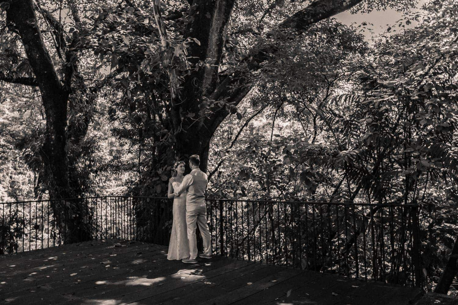 Wide angle photo of bride and groom standing on deck in rainforest.