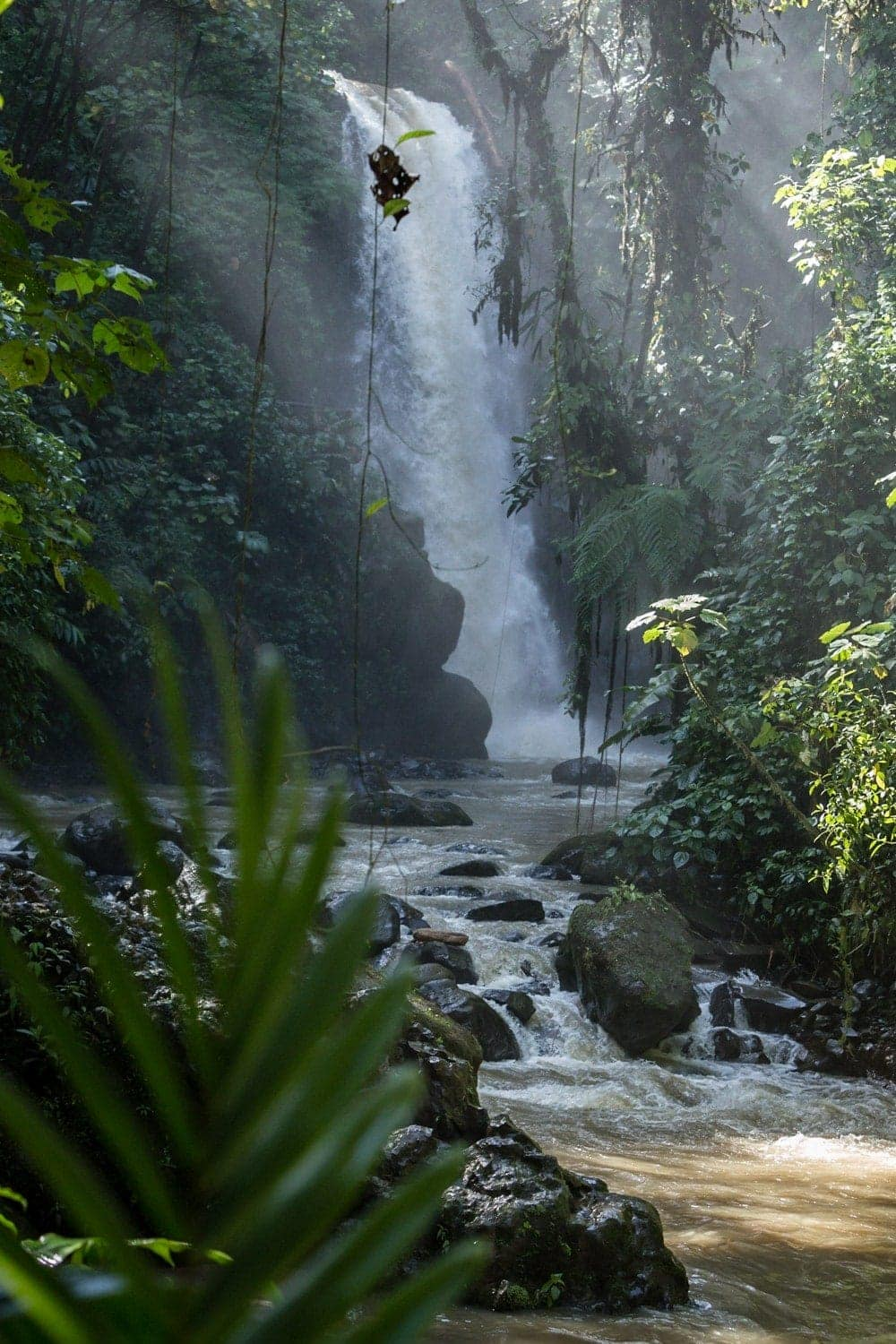 Amazing waterfall at La Paz Waterfall Gardens in cloud forest.