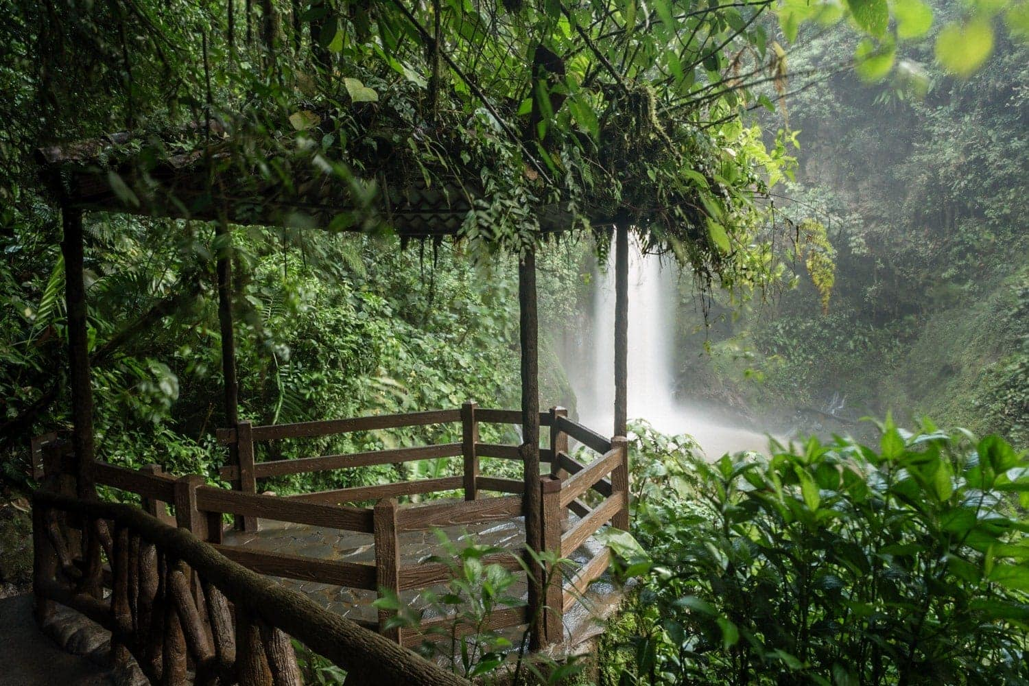 Gazebo in cloud forest with great views of waterfall.