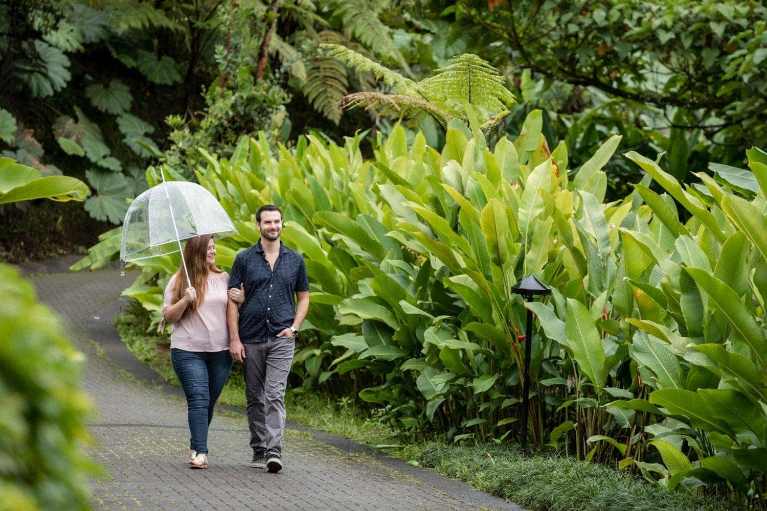 Couple in love walking and holding hands at La Paz Waterfall Gardens.