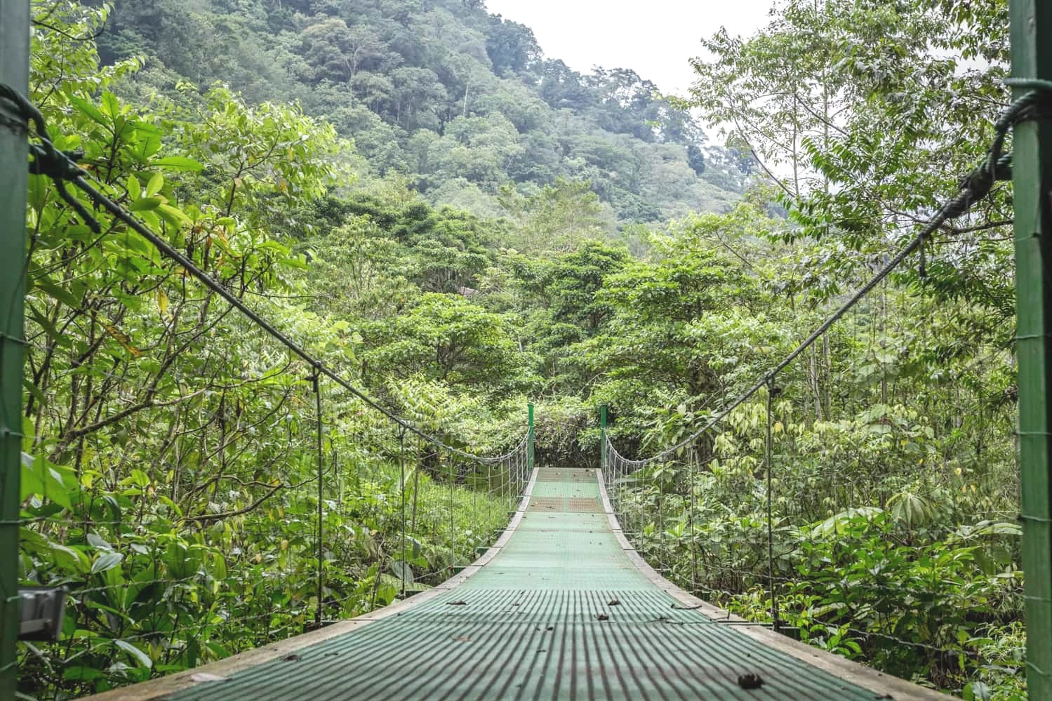 This hanging bridge in a cloud forest in Bajos del Toro spans a river that flows through El Silencio Lodge & Spa.