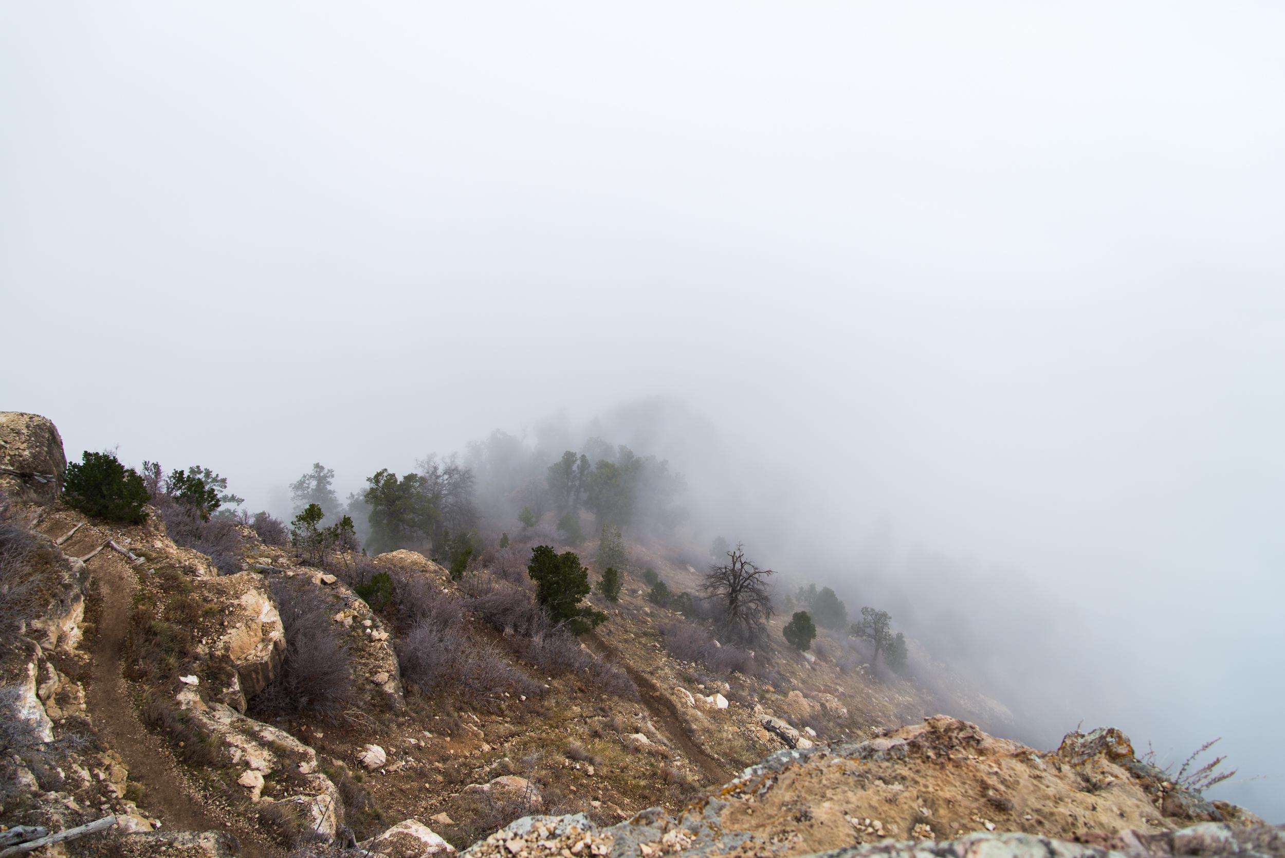 Grand_Canyon-134.jpg