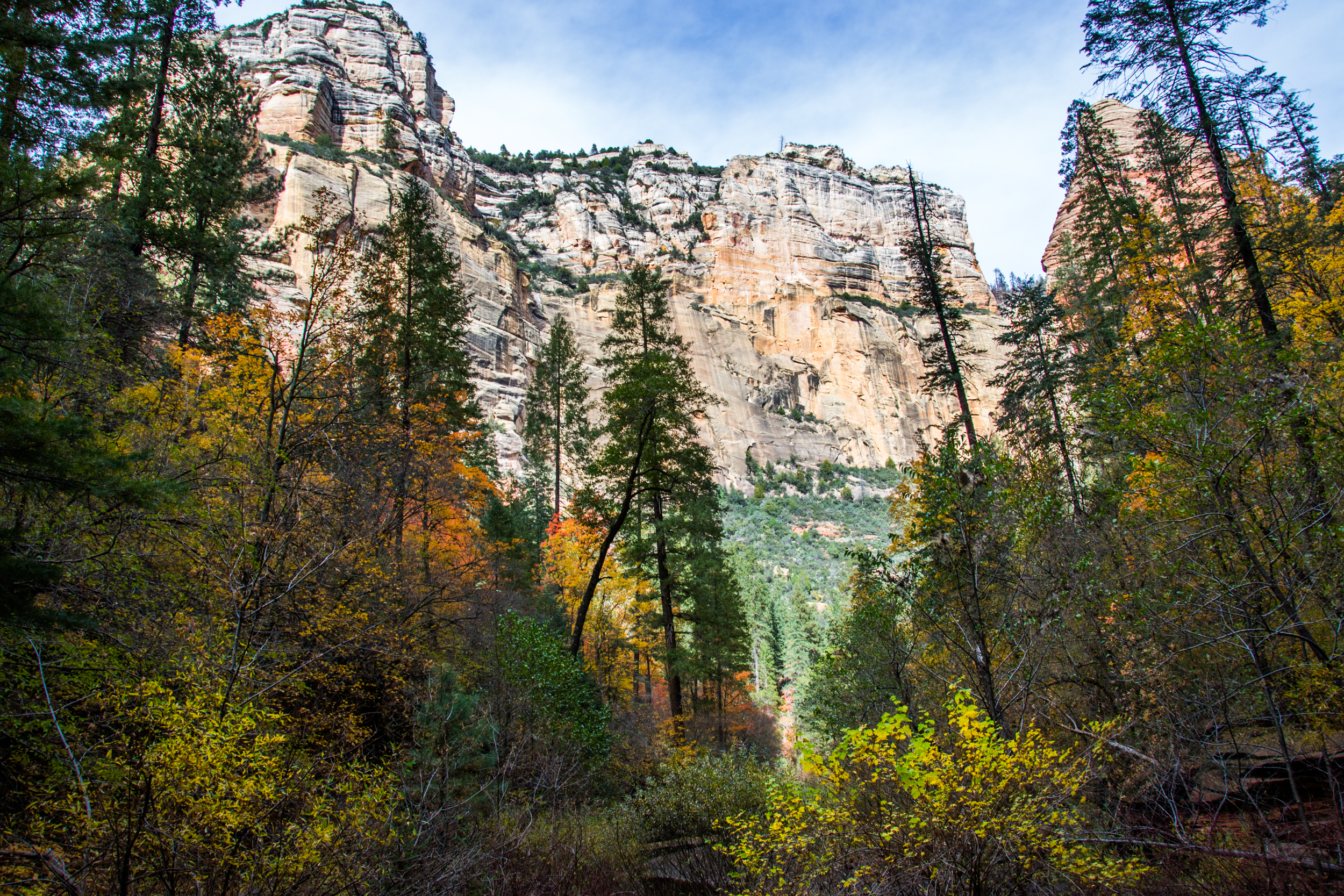 WF Oak Creek Canyon-60.jpg