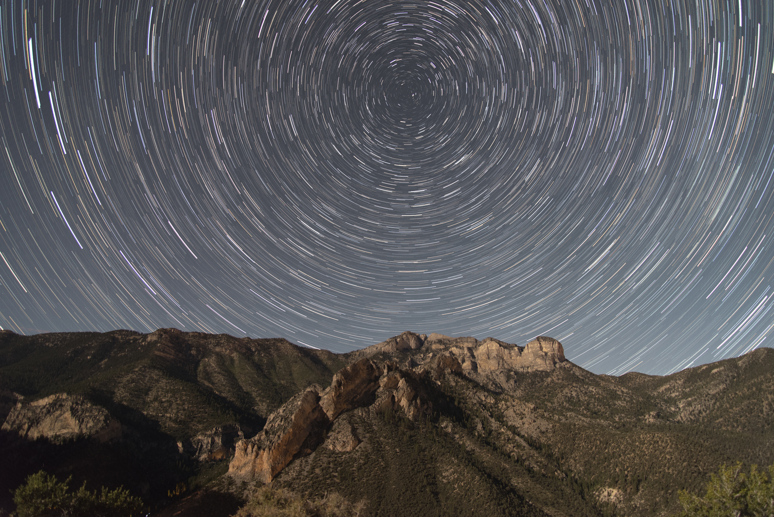 Star Trails - Kyle Canyon, NV
