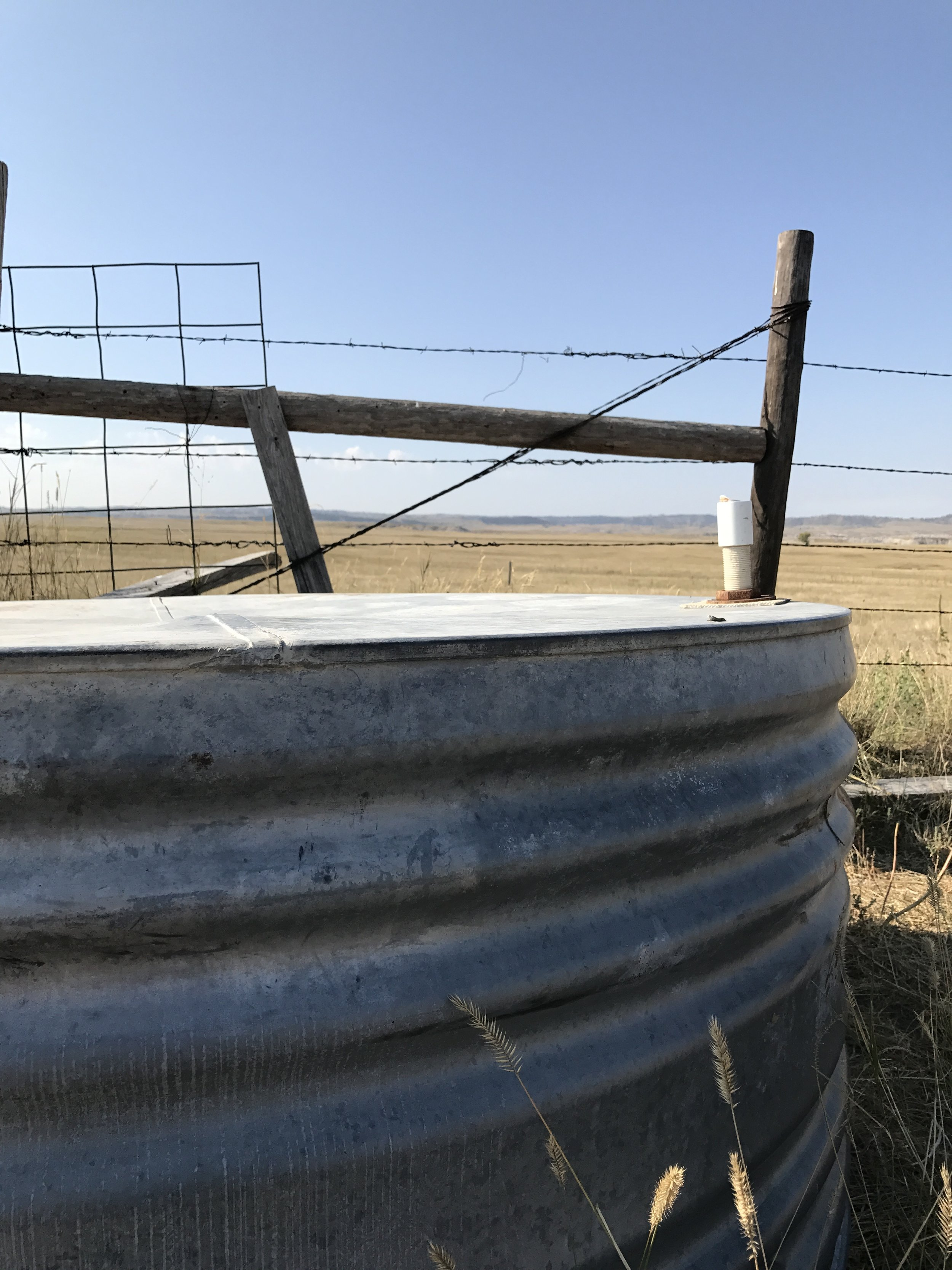 The tin water bin I was hiding behind with the group of antelope bedded down in the field beyond, about 200 yards away.