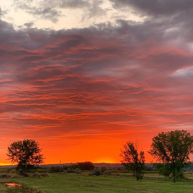 Montana sunrises are pretty incredible. #montanagram #montanalife #montana #sunrise #sunrise_shotz #optoutside #neverstopexploring #wanderlust #bigskymontana #bigskycountry #discover_earth #ourplanetdaily #nakedplanet #fall #fantastic_earth #montanacolors #montanamoment