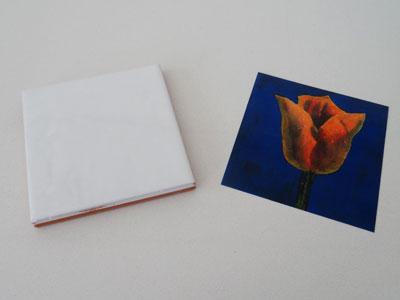 amsterdam-tulip-tiles