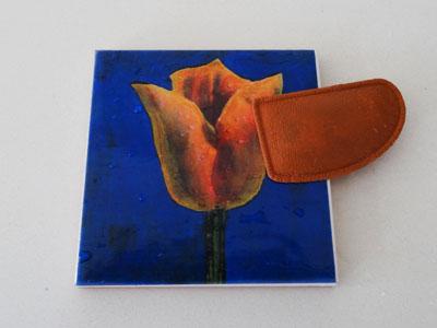 polishing-amsterdam-tulip-tiles