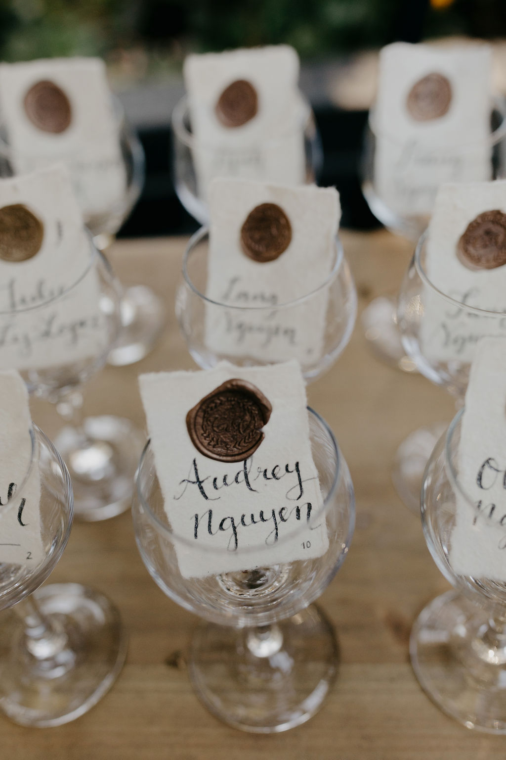 Deer Park Villa Wedding Planner Perfectly Planned Moments Nirav Patel Photography Place Cards.JPG