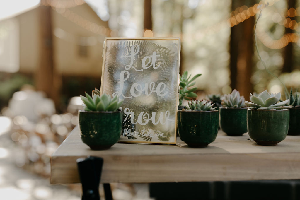 Deer Park Villa Wedding Planner Perfectly Planned Moments Nirav Patel Photography Succulent Favors.JPG