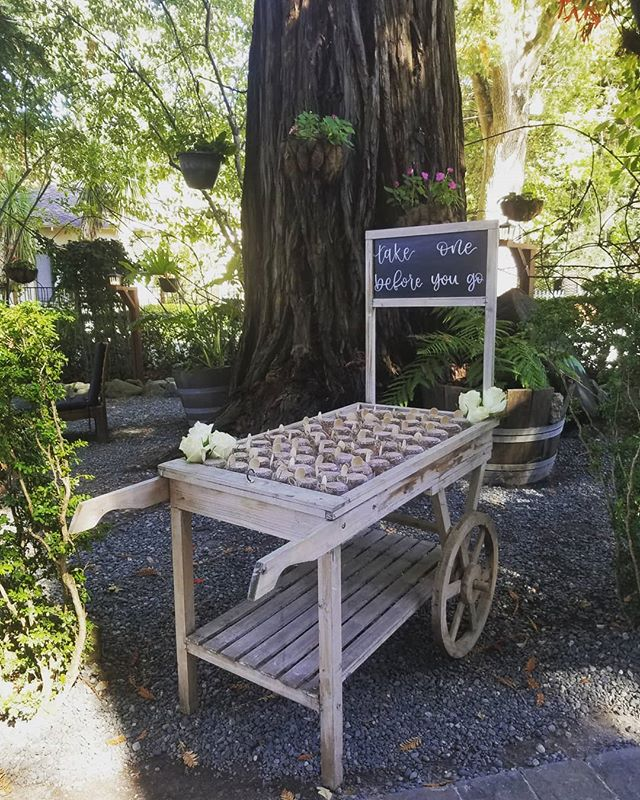 Did you ever see such a cutiepie wedding favor station?! (I think not!) This adorable cart carried little jars of homemade hot sauce for guests to take home and cook with! Love is the spice of life, right? 😉 I usually tell my clients that only about 50% of guests take wedding favors, either due to forgetting them when they leave, to the fact that they're traveling and just can't take extra stuff, or (honestly?) Because they don't really want them. Estimating for 50% of the guest count ensures you're not wasting a bunch of money and time putting together favors that are just going to sit in your garage after the wedding is over. But you know what I learned from THIS particular favor set up? Not only does the location of the favors matter (near the exit for easy grabbing on their way out) but the appeal of the favor station itself. This one was fun and attractive, which drew guests toward it! If you want guests to be more likely to take your favors, be sure to chat with your planner about how you can strategically place and set them up. 💡 . . . . #deerparkvillawedding #californiawedding #weddingfavors #weddinginspo #uniquewedding #perfectlyplannedmoments #deerparkvilla #pinterestwedding