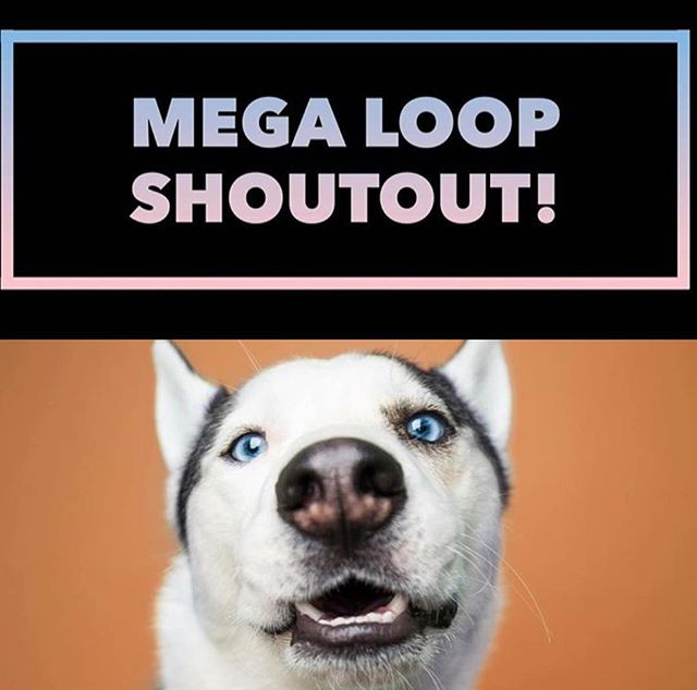 """🎉✨Win a 97.8k  Shoutout!?✨🎉 . . 🚨PUBLIC PET ACCOUNTS ONLY🚨 . . ☀️Follow the path below to complete the short loop! ☀️ . . ⚡️ Follow my link to (@ia.k9s ) and follow the account⚡️ . . 🎈 Like the shoutout photo and post """"Done ✅"""" in the comments section on each page 🎈 ➡️Then follow the links to the next page until you return here. ↪️That's it!↩️ . . 🌟 To stand out, like or comment extra photos 😉 🌟 . . 🍀ENDS IN 2 hours! Good luck! 🍀"""