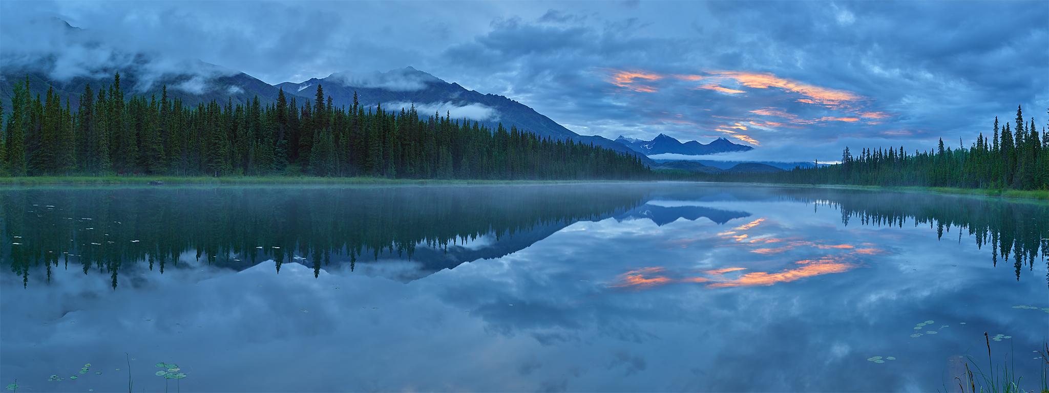 Early Morning in Alaskan Taiga