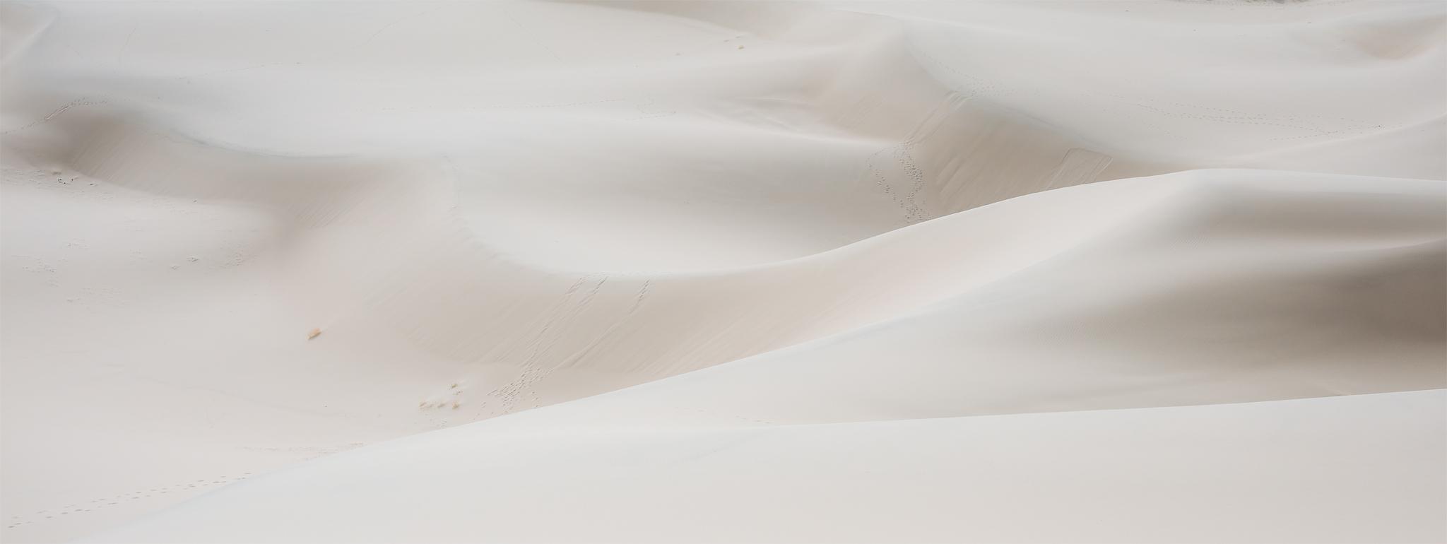 Milky Dunes