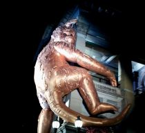 The Golden Monkey recognises the year of the Monkey in Chinese culture.