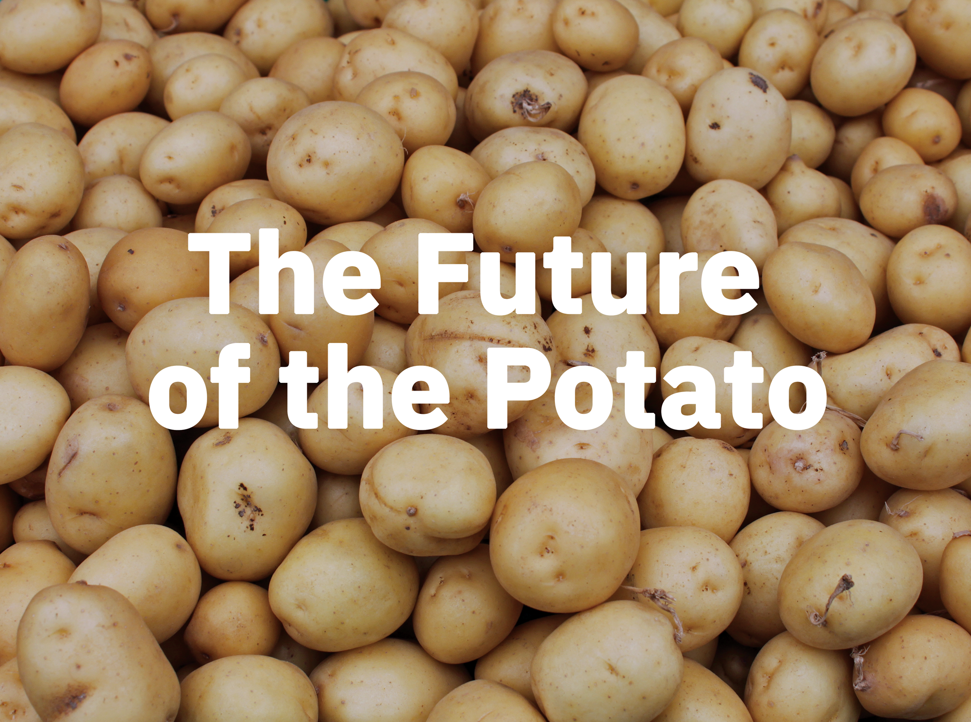 potatoOfTheFuture.png