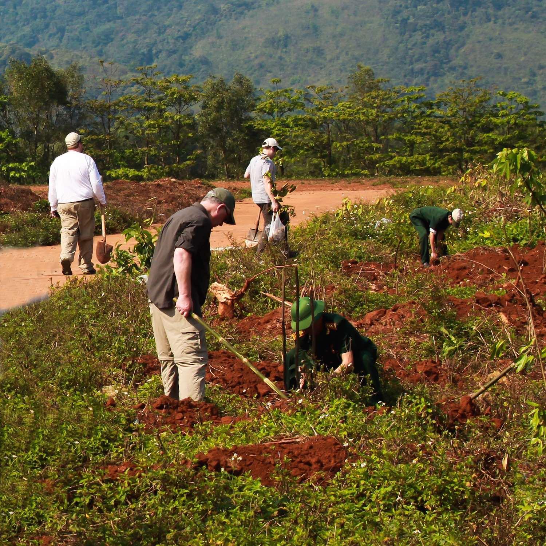 group plant 2012 sq 1500.jpg