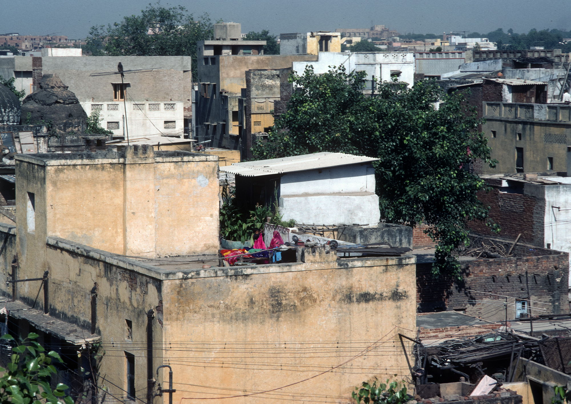 Delhi, 1983. Olympus OM-2n and Kodachrome 64.