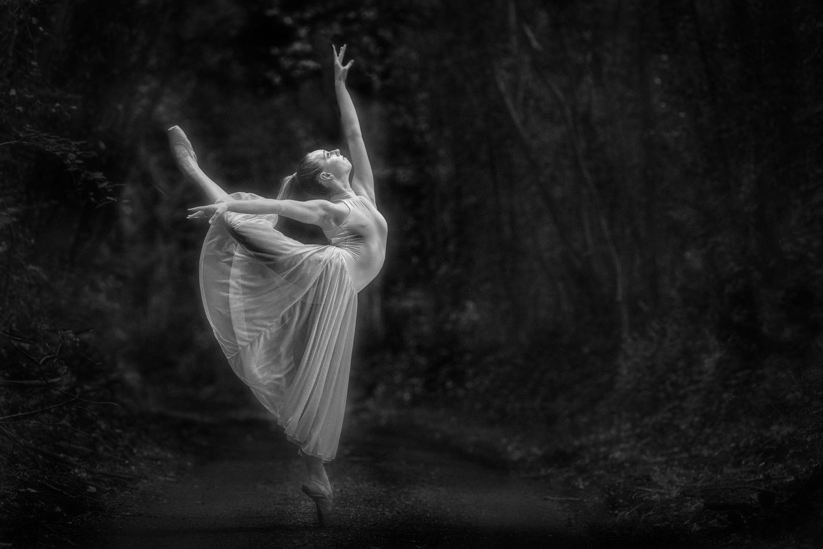 Dancing in the moonlight. Gold medal for monochrome in the KCPA exhibition 2019.