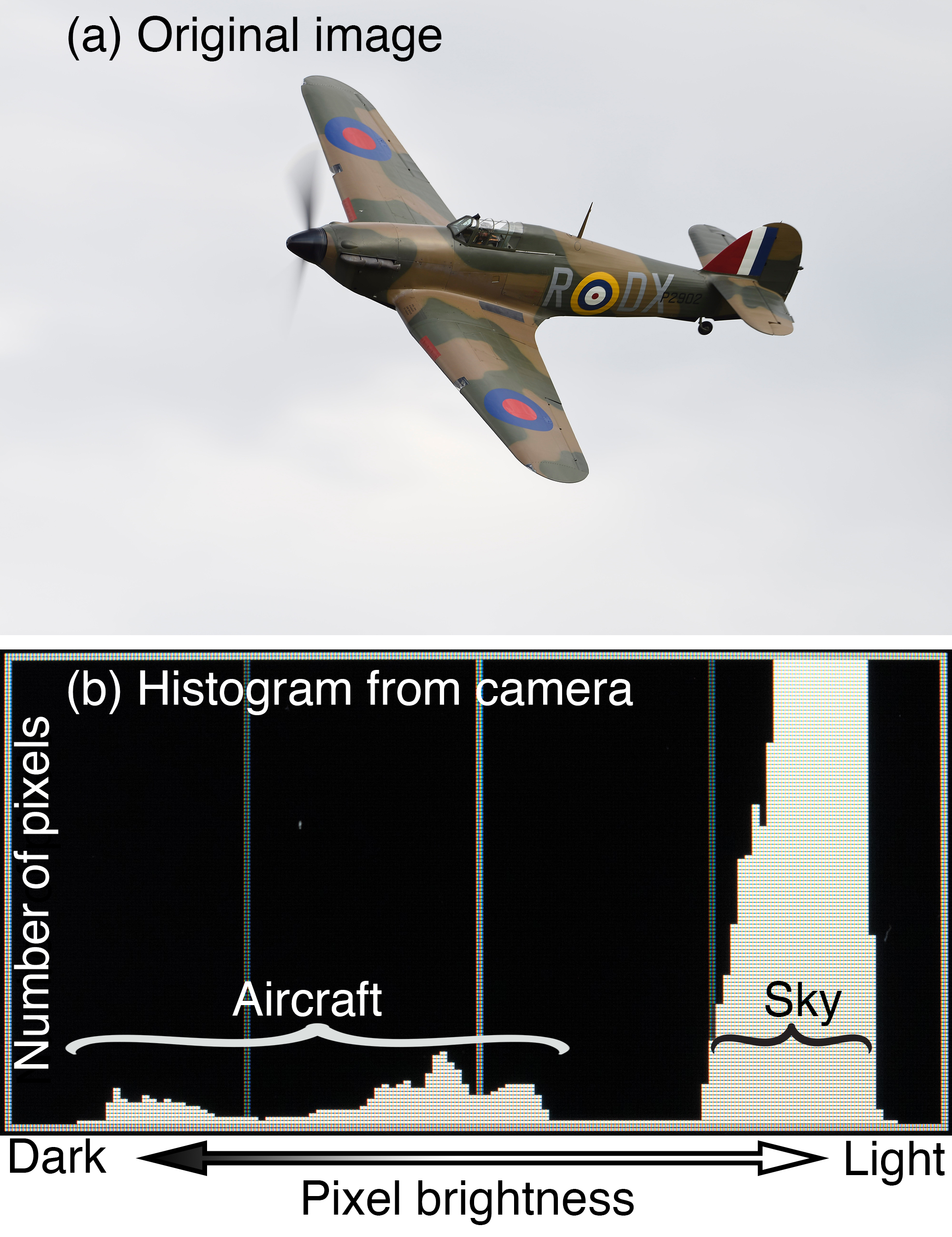 Using the histogram to determine exposure. (a) An image of a Hurricane on a topside pass. (b) The corresponding histogram on the back of the camera. See text below for further explanation.