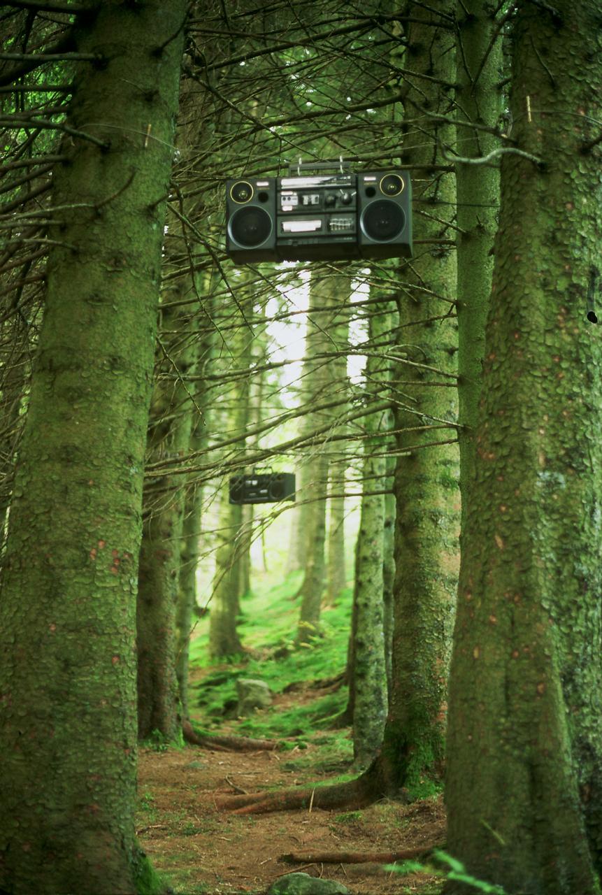 Ether installation in the Fløyen Forest, Bergen 1998. Photo: Sissel Lillebostad.