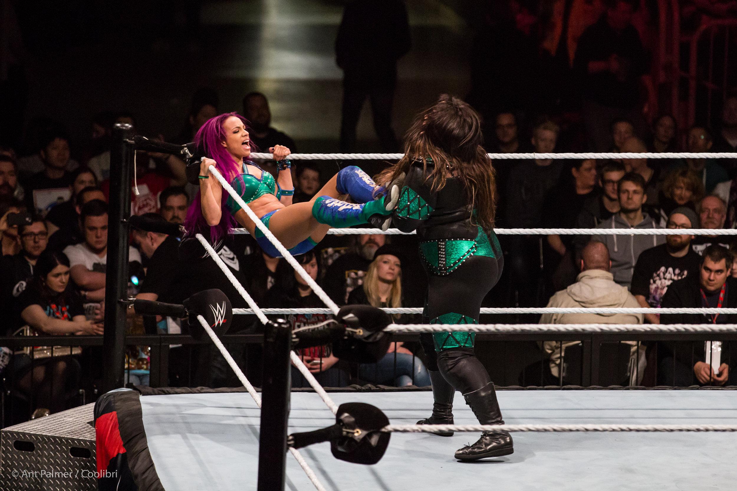 2017_02_22_WWE_DUS-10.jpg